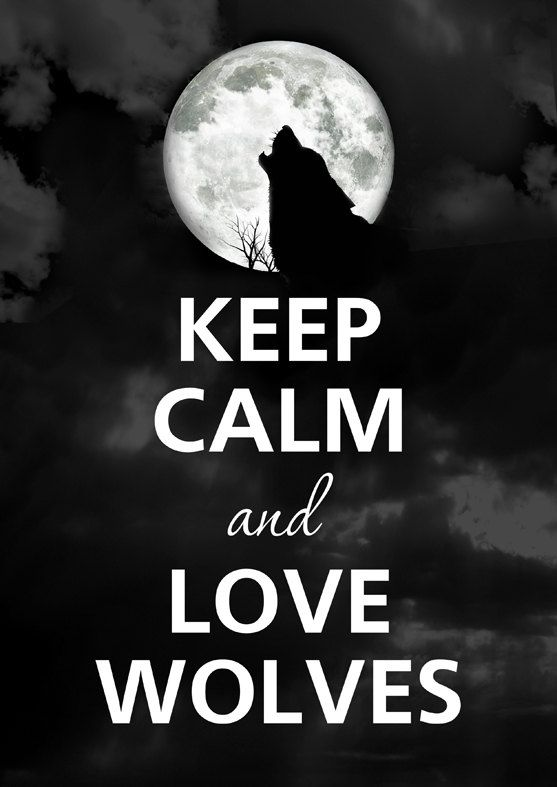 KEEP CALM AND LOVE WOLVES!                                                                                                                                                                                  More