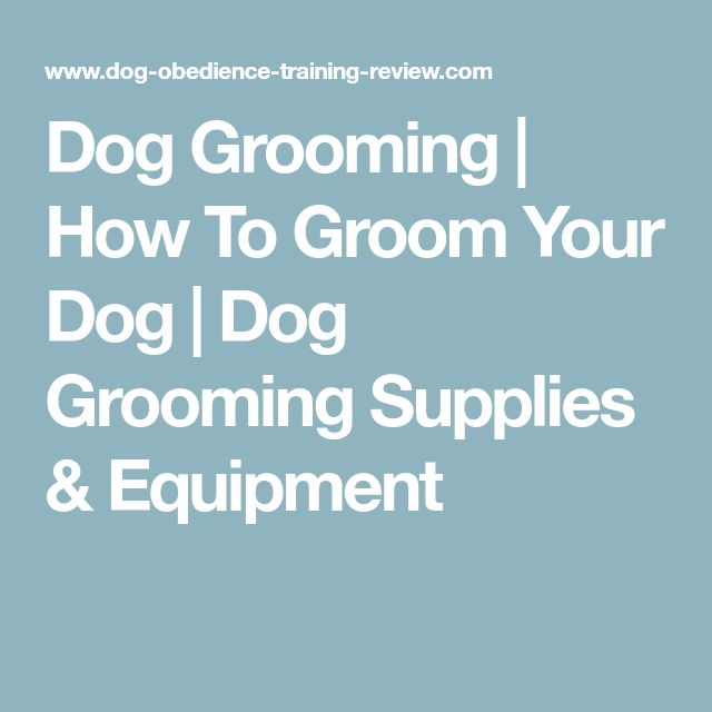 Dog Grooming | How To Groom Your Dog | Dog Grooming Supplies & Equipment
