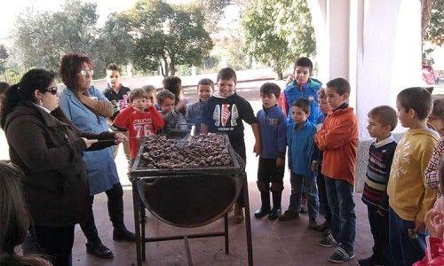 Elvas: Escolas Primárias de Santa Luzia em dia de Magusto