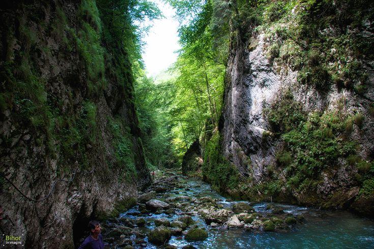 Pe Cheile Galbenei | Bihor in imagini