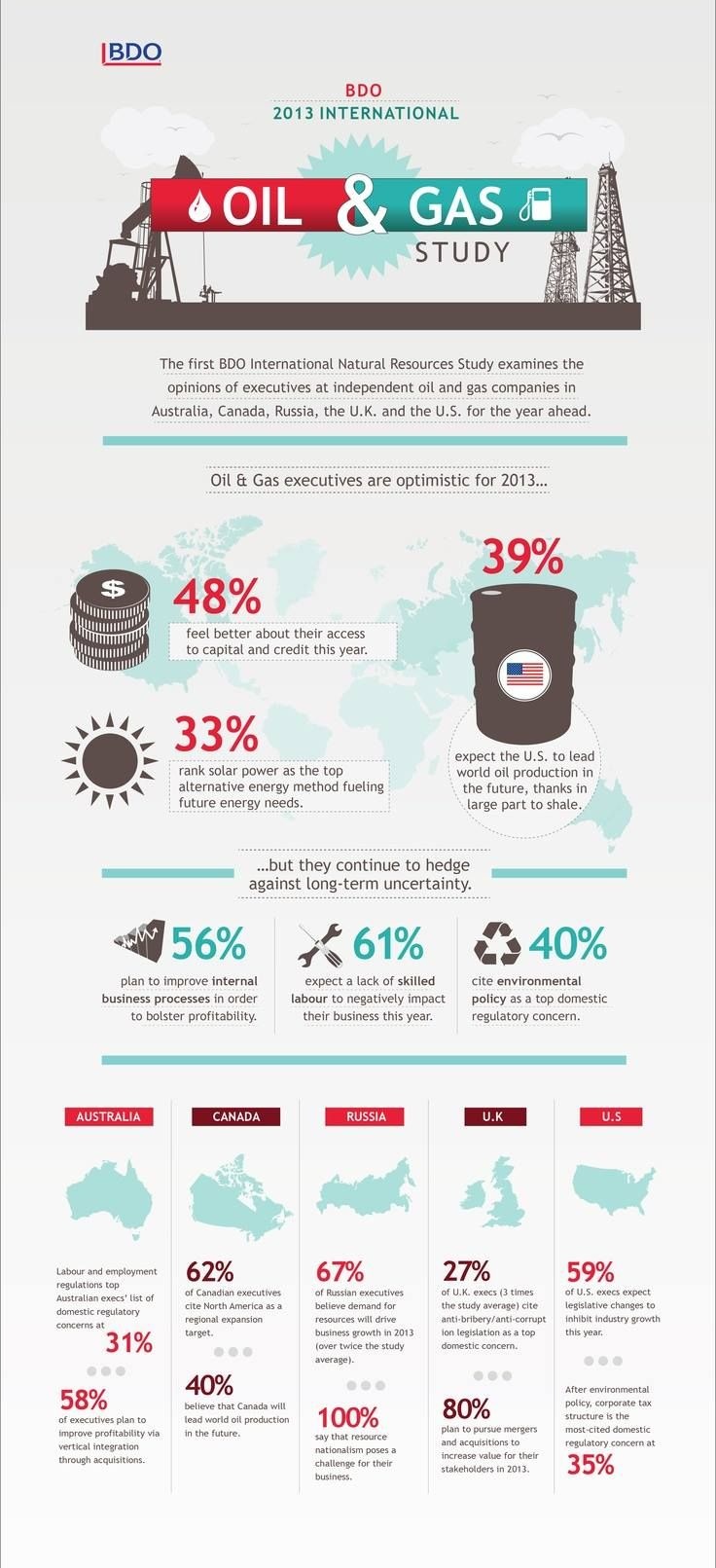 2013 International Oil and Gas Study - BDO