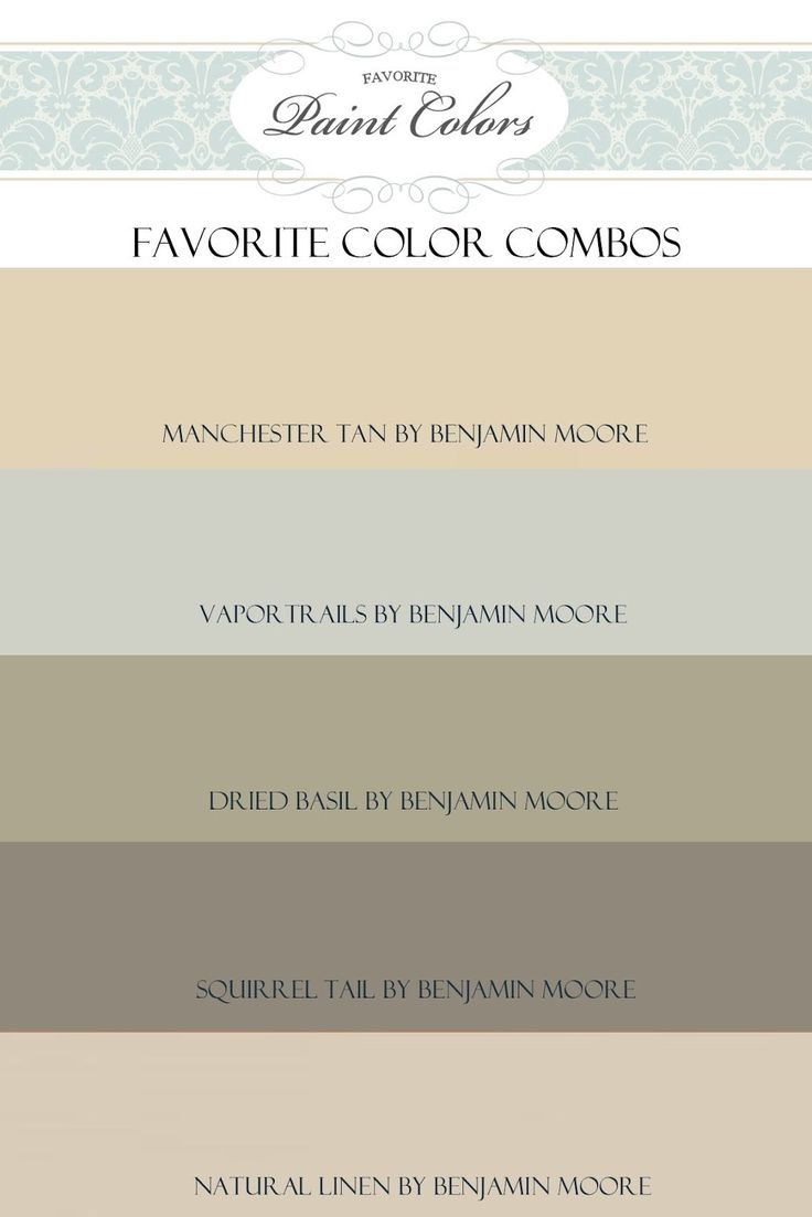 Paint Color Dry Earth