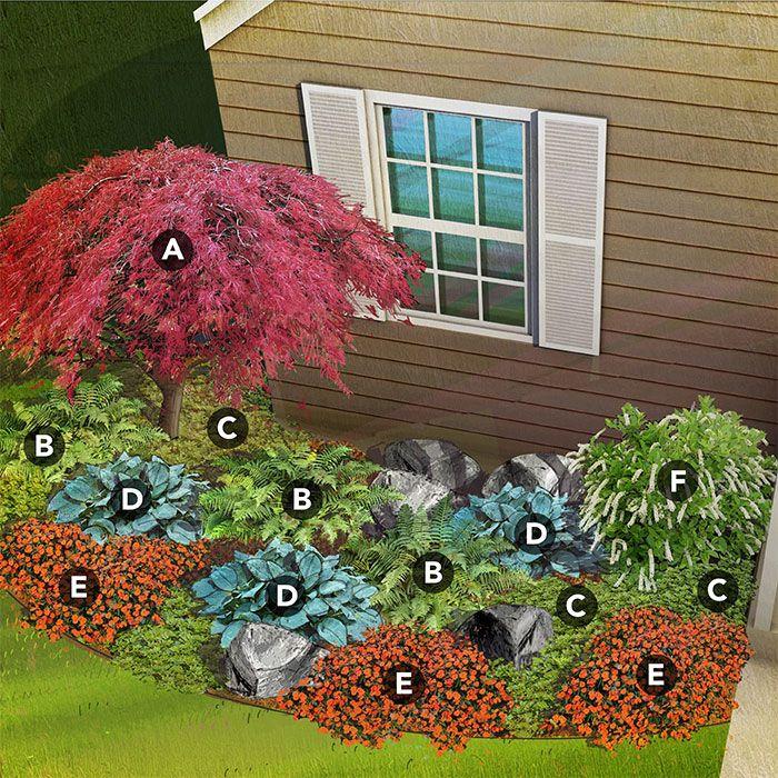 shade garden plan for north region featuring Japanese maple, male fern, pachysandra, hosta, New Guinea impatiens, Virginia sweetspire