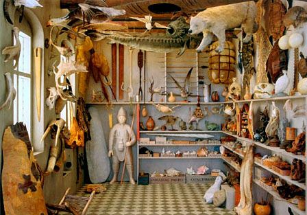 Re-Creation of Ole Worm's Cabinet of Curiosities Museum by Artist Rosamond Purcell.