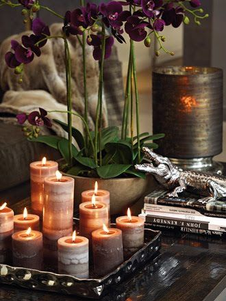 Candles+books+plant = the trio of a successfull vignette