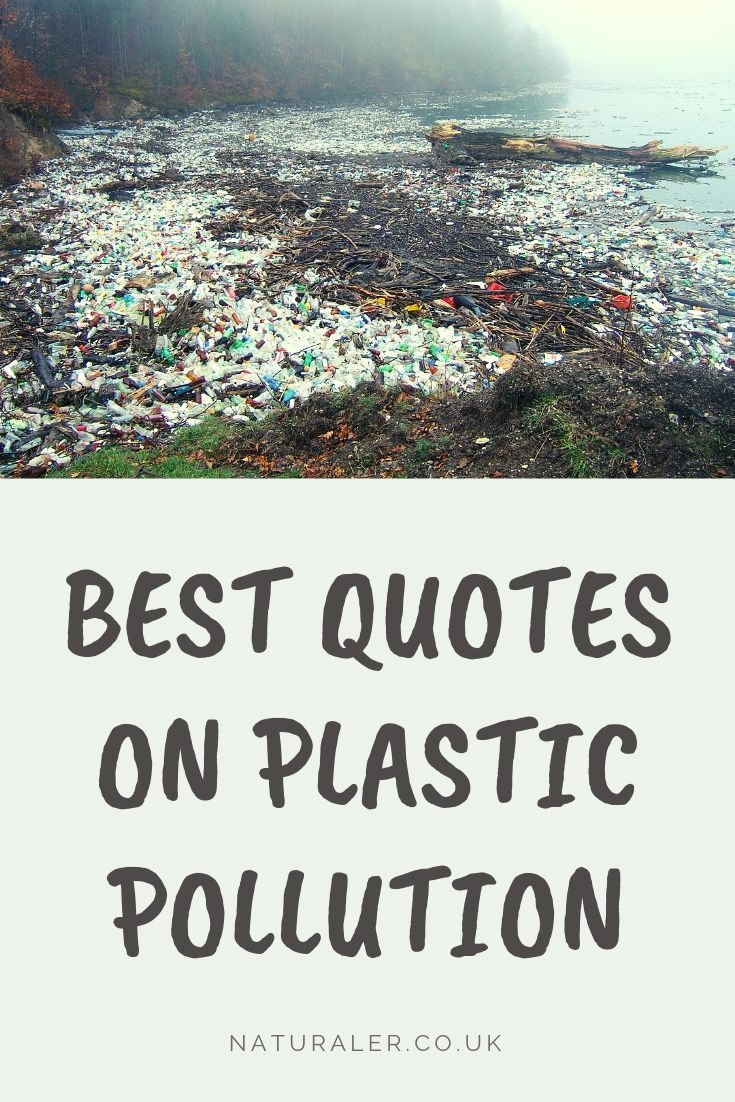 Skip The Plastic Save The Planet Save Earth Earth Quotes Planets