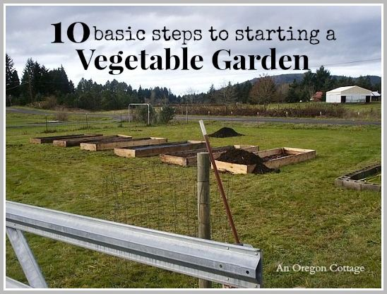Take these 10 basic steps towards growing your own food: Vegetable Garden Series Part 1 - An Oregon Cottage