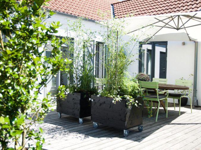 Gillar känslan på uteplatsen, planteringar, plats för både stillhet och gemenskap murgröna-arkiv - Arkitektens Trädgård