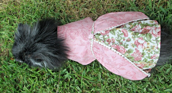 Victorian Dog Dress Toy Breed Cotton  Rose by BloomingtailsDogDuds, $23.95
