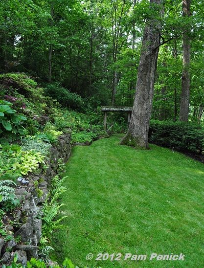 Stone wall in back for raised trees and landscaping along fence - not this exact rock, but a variation