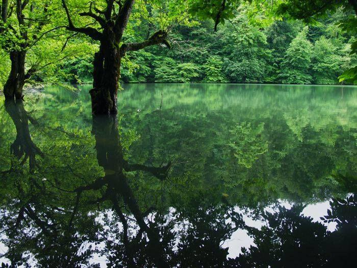 Mianshe or Churt lake, Sari, Mazandaran province, Iran
