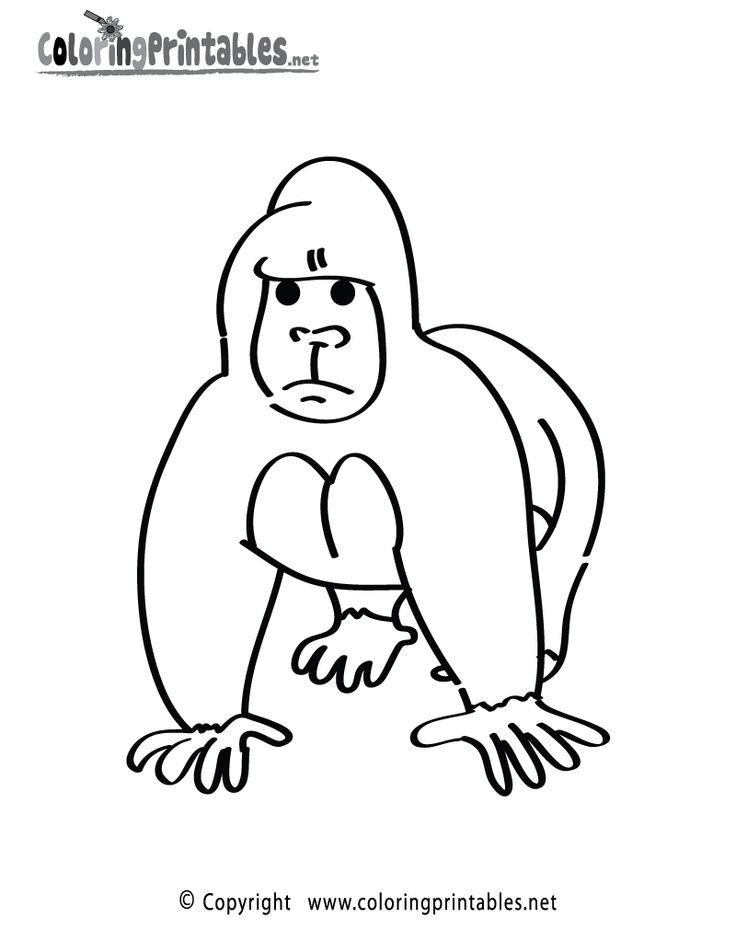 gorilla coloring page printable gorilla coloring page a free animal
