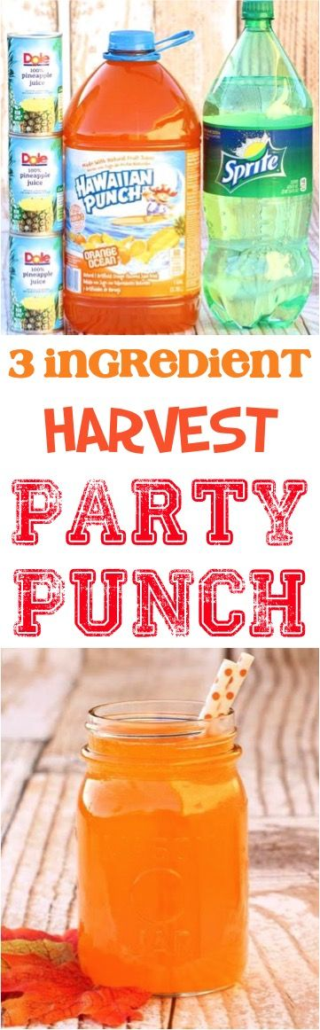Fall Party Punch Recipes - This sparkling harvest drink is so delicious! Just 3 ingredients!