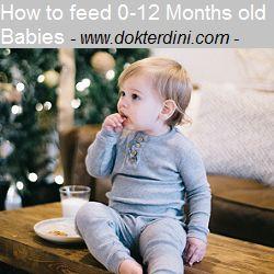 Blog dr.Dini: Makanan Bayi 0-12 Bulan