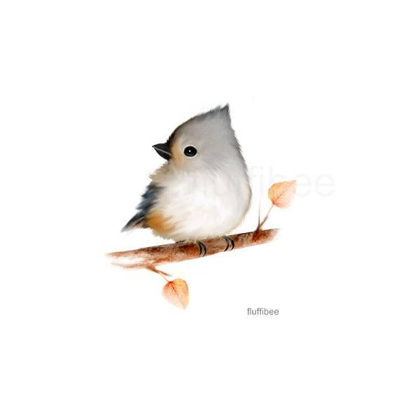 Bird Prints Baby Bird Art Baby Animal Art Baby Animals With