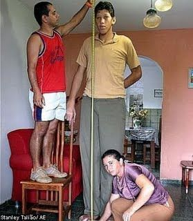jo lisson fernandes da silva 7 feet 6 2 inches 229 cm. Black Bedroom Furniture Sets. Home Design Ideas