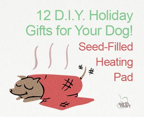 DIY Holiday Gifts for Your Dog-Homemade Heating Pad on www.BarkandSwagger.com