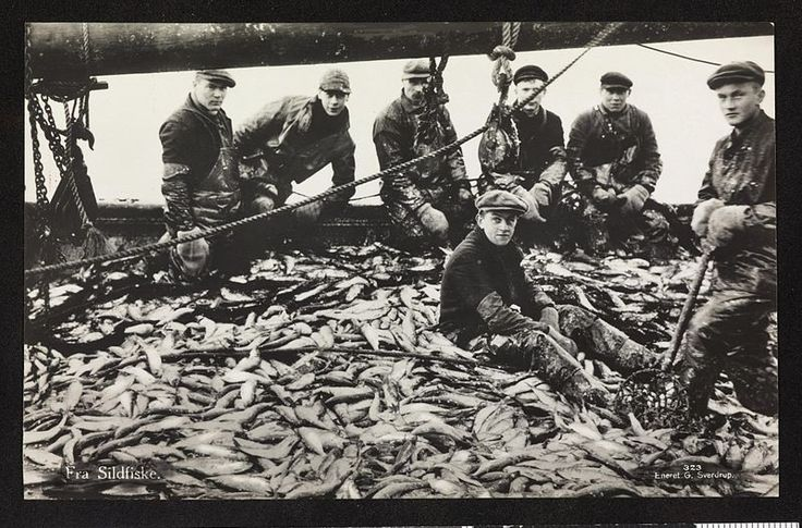 From Wikiwand: «Fra Sildfiske», trolig fra 1920–1930-talletFoto: Nasjonalbiblioteket
