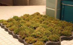 Moss Bath Mat Buy