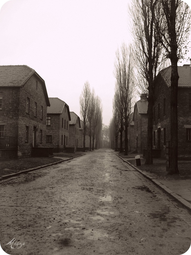 Part of Auschwitz