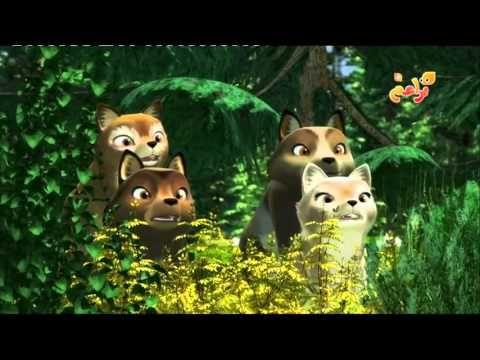 حكايات تاتونكا 7 - الصداقة الحقيقية -صغار الدببة - YouTube
