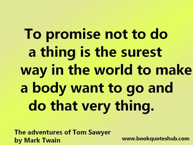 Mark twain the adventures of tom sawyer essay