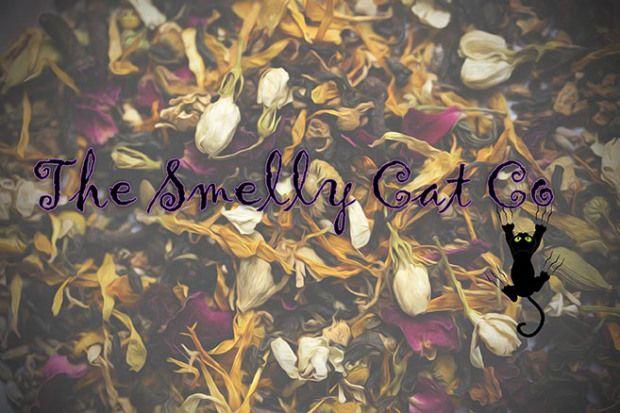 The Smelly Cat Wordpress Blog