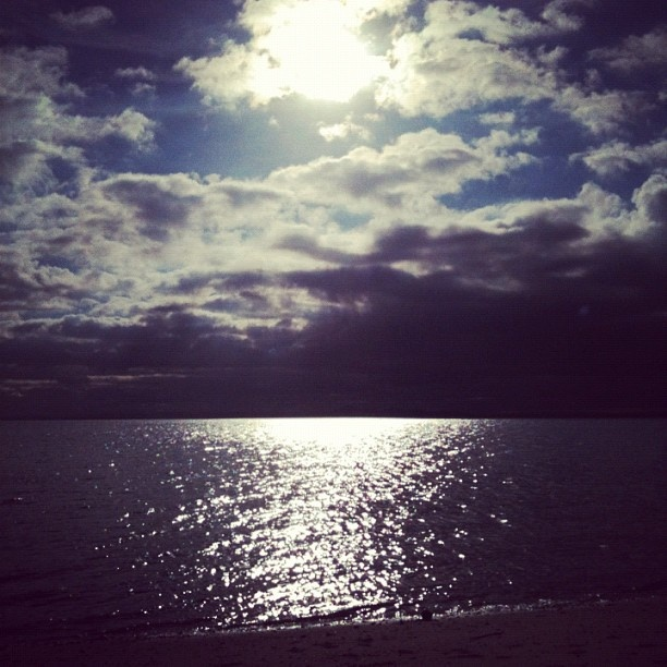 Our private beach #beach #sun #sand #water #geelong #bellarine - @rueclermarket- #webstagram