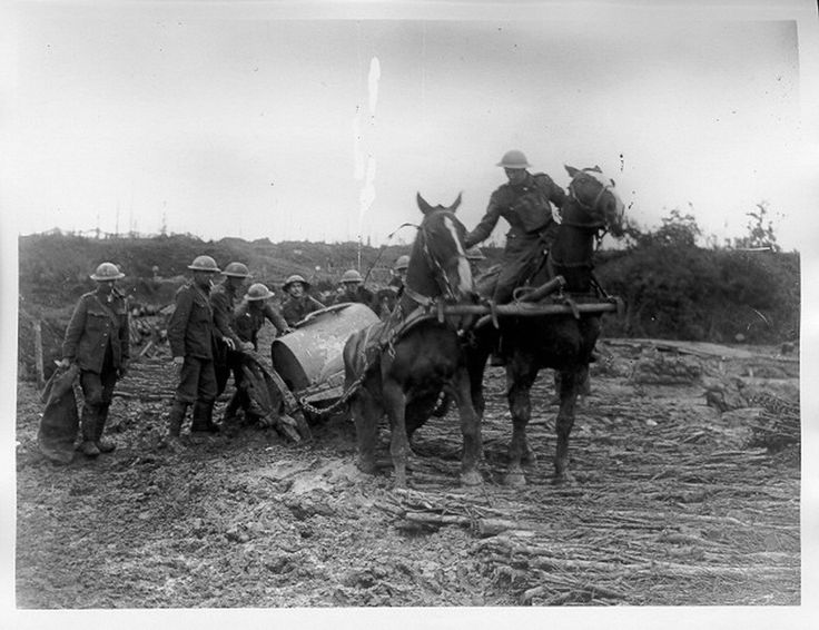 On the Western Front during the First World War: Battle of Ypres, 1917 (The First World War Poetry Digital Archive)
