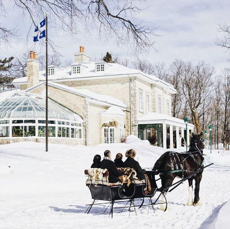 White Horse Restaurant Ottawa