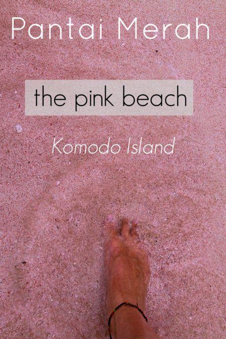 Pantai Merah - The pink beach of Komodo Island  Visiting the pink sand beach of Pantai Merah was a wonderful experience during our four day journey to Komodo Island   via The Traveloguer travel blog