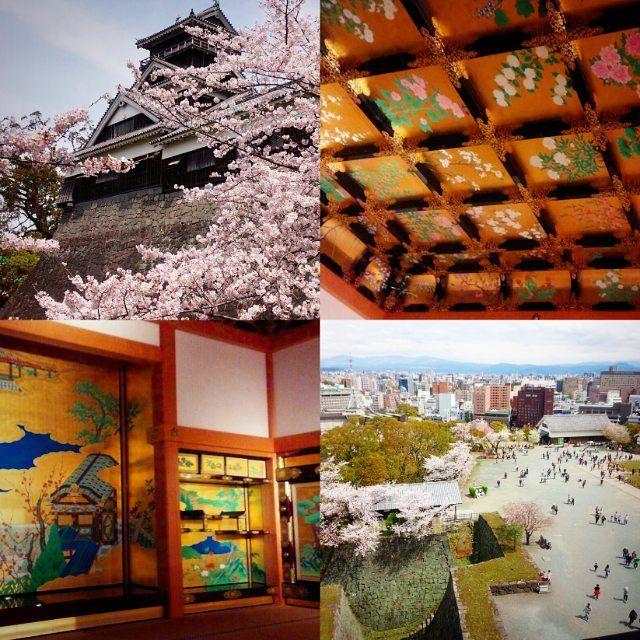 20年振りくらいに熊本城に行ったらめっちゃ人が多かったけど楽しすぎたぁ 桜は満開で城近辺はお土産のお店がたくさんで賑わってたしうに三倍のコロッケやゆるキャラと写真撮ったりアーケードの紅蘭亭で太平燕食べ好きな古着みまくってひさびさに遊んだぁ( 艸)20年経つとかなり変わるものね年齢がこわいこわいっ  #熊本県 #熊本城 #桜  #くまモン #太平燕 #観光 #Japan #Kumamoto #spring #kumamon by nokazenokaze