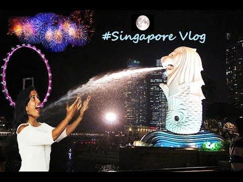 SINGAPORE TRAVEL VLOG 2017  | CITY TOUR-TOURIST ATTRACTIONS - WATCH VIDEO HERE -> http://singaporeonlinetop.info/travel/singapore-travel-vlog-2017-city-tour-tourist-attractions/     SINGAPORE TRAVEL VLOG 2017  | CITY TOUR-TOURIST ATTRACTIONS Singapore-also known as garden city or the lion city is a marvellous place.It's beauty is astonishing .Watch this video as I take you to the land of dreams.You can also take is as a singapore travel guide.We visited the major...