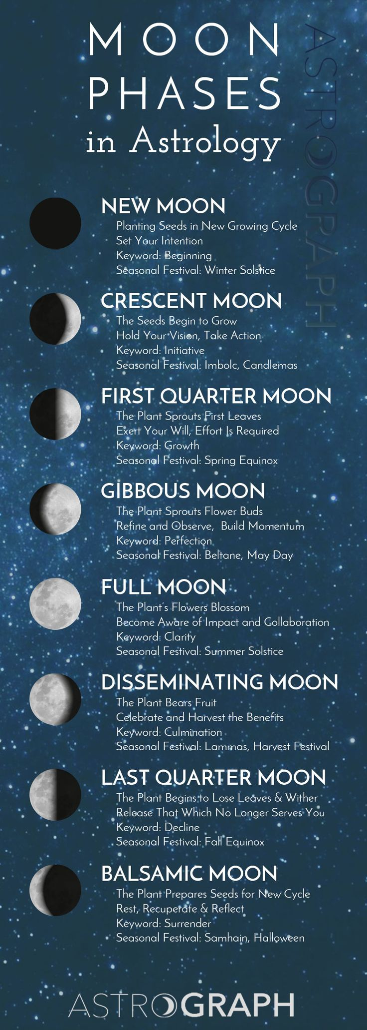 Follow along with the Moon Phases.  Utilize the gift of astrology to flow with the natural rhythms of life.