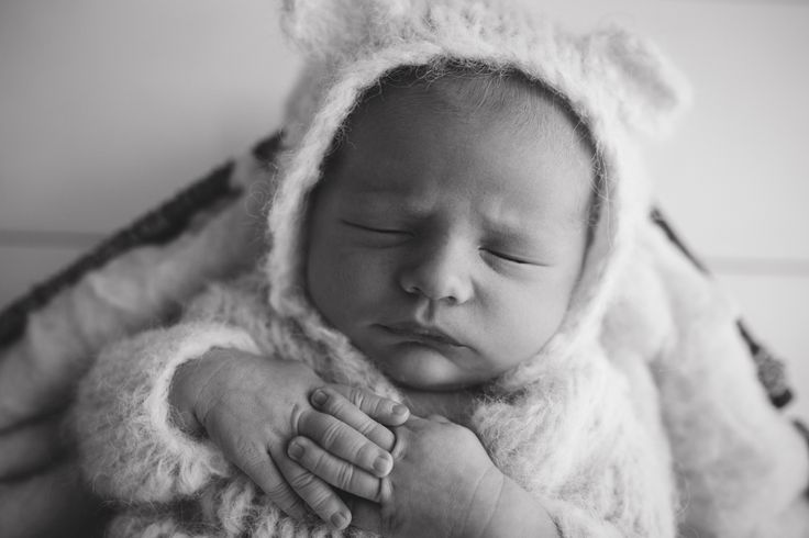 Roman Woolf #babyphotoshoot #babyphotography #newbornphotography credit @blincphotography