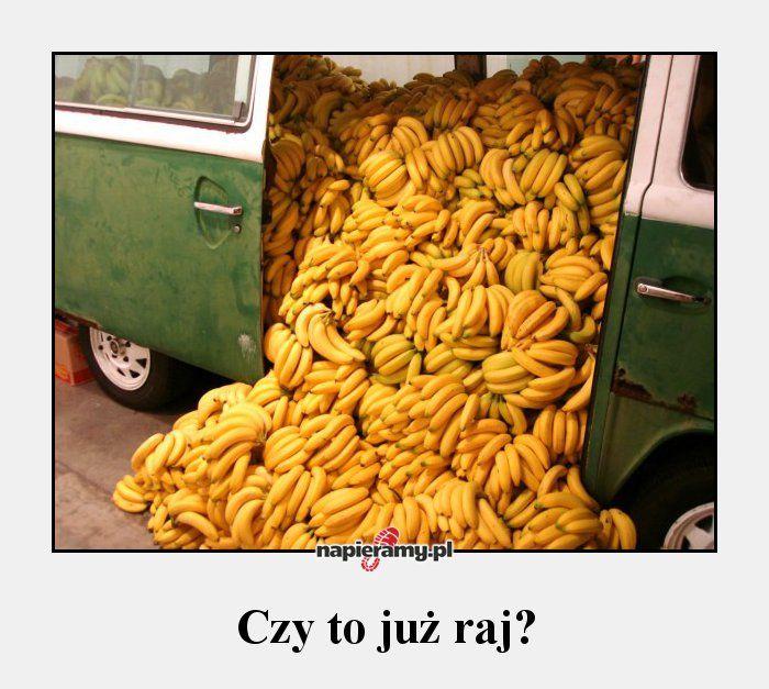 Czy to już raj?  #banany #raj #owoce #bieganie #biegacz #napieramy