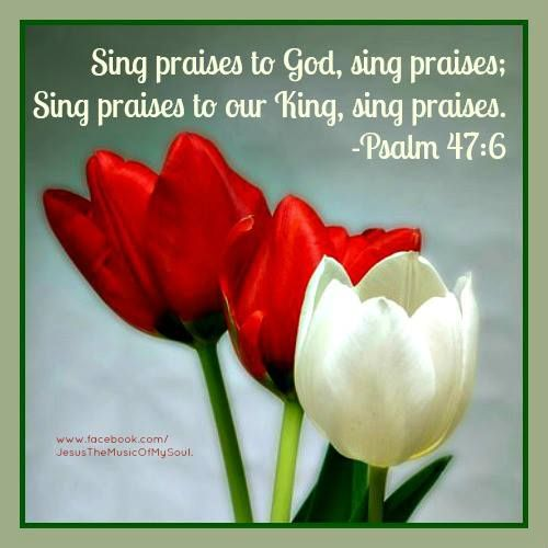 We are joyfully called to be MOVING in adoring praise of Yahweh. Join in with our choir groups. www.magnificatmealmovement.com