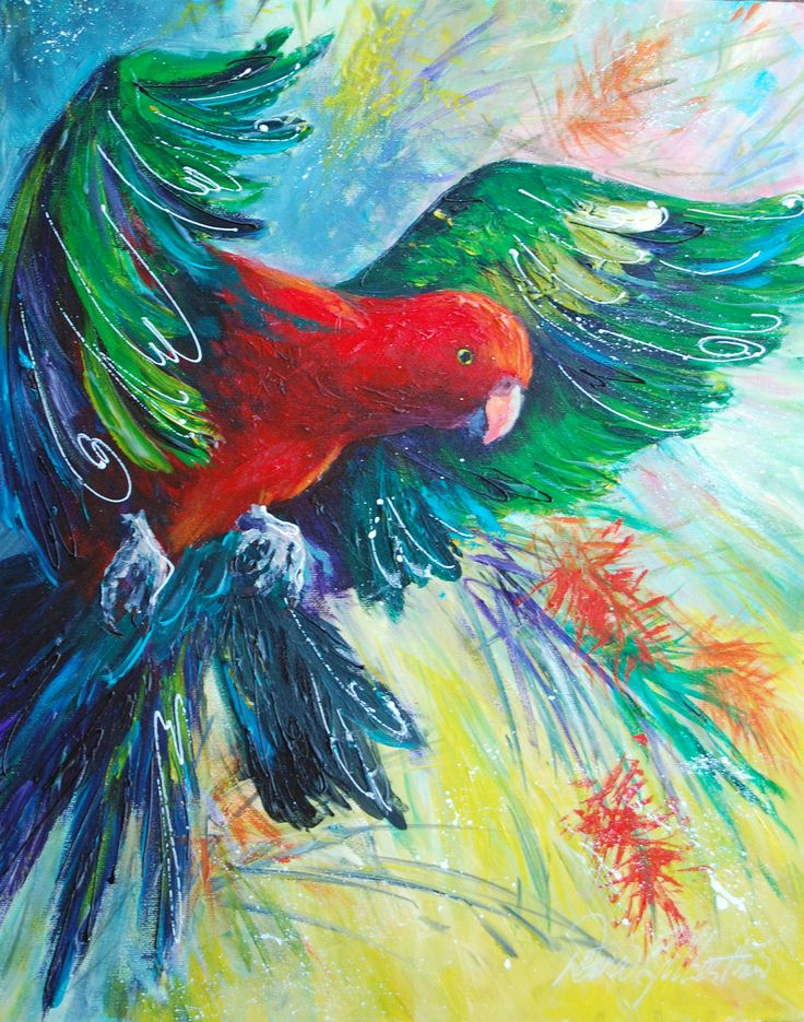 King Parrot in Flight  by Donna Gilbertson