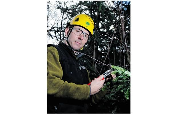 Arborist Peter Grellier of Bartlett Tree Experts in Burnaby demonstrates how to properly prune a branch.
