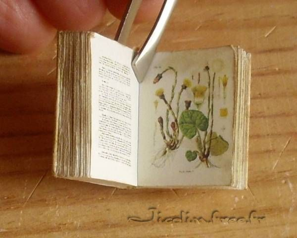 """free mini printie - botanical book - click on """"Imprimable en pdf"""" for printable to use as dollhouse book or framed art"""