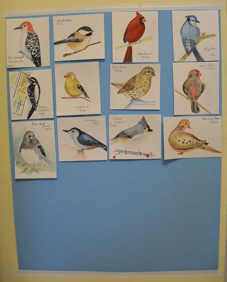 Birds on our bird feeder this winter. Watercolor pencils/watercolors