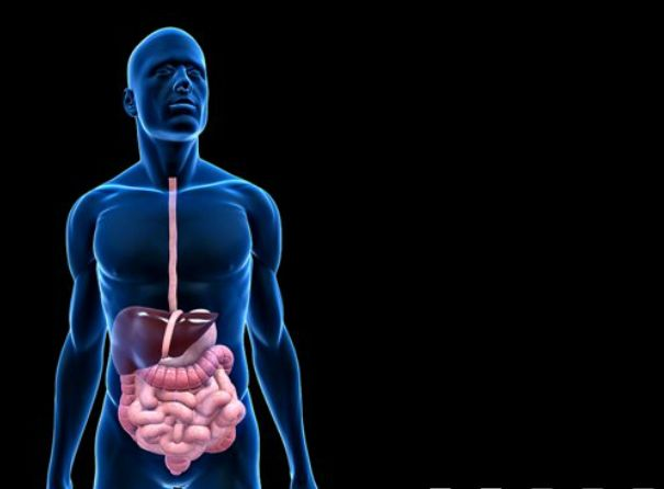 #Digestive #Problems #PowerPoint #Template. This template ...