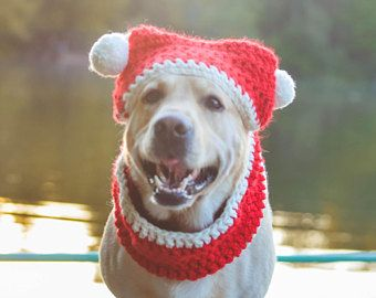 Cane regalo amante cane di Natale regali per Natale cane sciarpa cappello Natale cane vestito maglia cane sciarpa cappello Natale cane cappuccio sciarpa cappello sciarpa della Santa