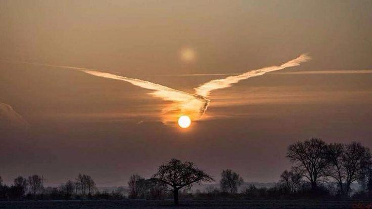 Das 1414-Foto des Tages: Dieser Flieger hat Übergepäck – wishful thinking