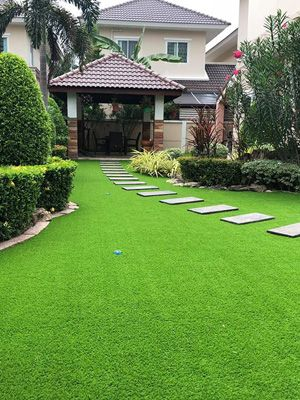 Best Ground Cover For Dogs: Dog-Friendly Backyard in 2020 ...