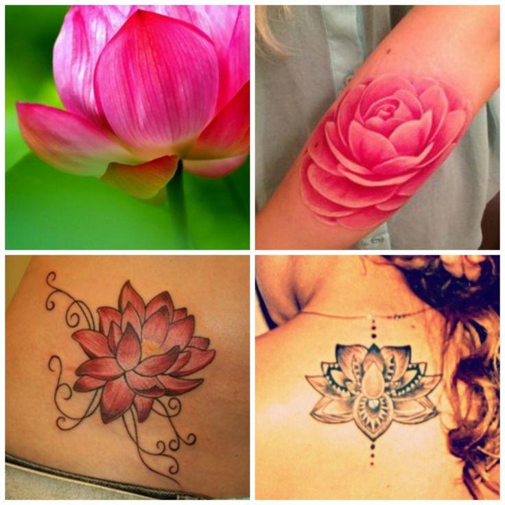 Tatouage fleur de lotus : amour, calme, pureté…