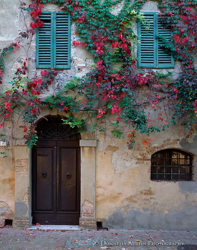Tuscany Italy Vine Covered Wall With Door Way And