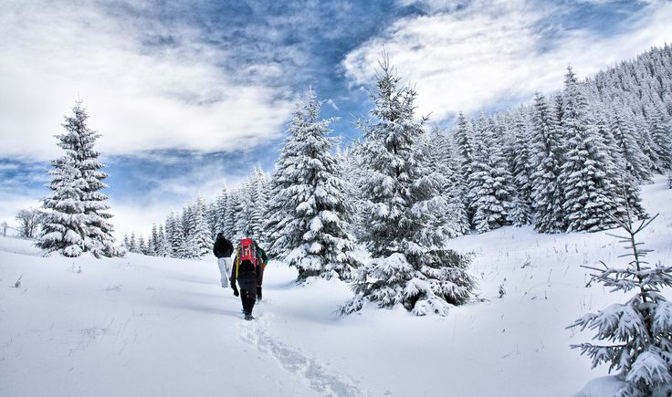 5 things to think about before hiking in winter