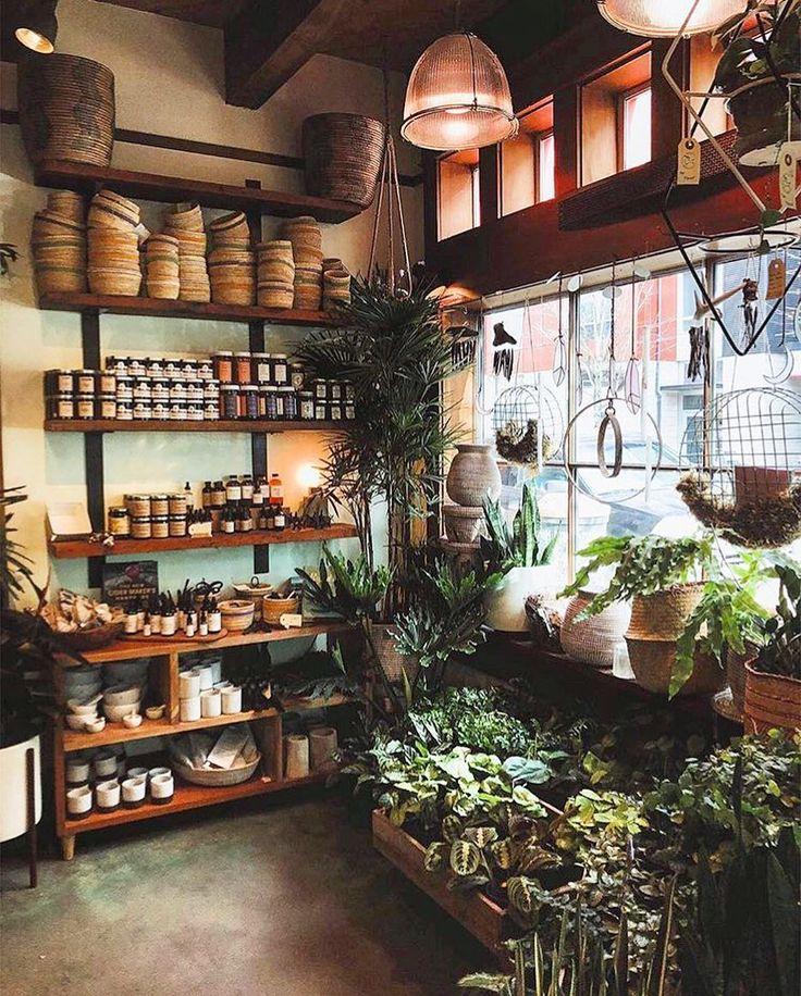4,067 отметок «Нравится», 13 комментариев — Pistils Nursery (@pistilsnursery) в Instagram: «Weekends are for plant shopping!  Thanks for sharing the lovely image, @ryanthemermaid»