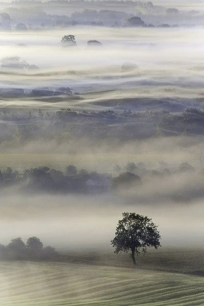 enchantedengland:     Pewsey Vale, in Wiltshire, separates the chalk downs of Salisbury Plain from the Marlborough Downs.